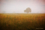 Pasture Digital Art Posters - Lone Tree In Meadow No. 2 Poster by Dave Gordon