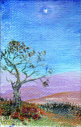 Regina Valluzzi - Lone tree