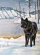 Yellowstone Painting Metal Prints - Lone Wolf Metal Print by Harriet Peck Taylor
