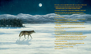 Steve Swavely - Lone Wolf in Winter  ...