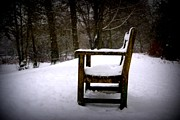 Gail Girvan - Loneliness in the snow