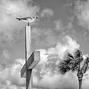 The Wooden Cross Photo Prints - Lonely at the Top Print by Lynn Palmer