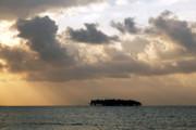 James Brunker - Lonely Island