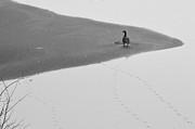 Jim Wilcox - Lonely