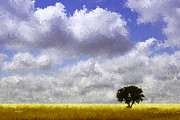 Oklahoma Landscapes Posters - Lonely on the Prairie Poster by Ann Powell