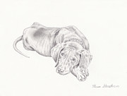 Puppy Drawings Framed Prints - Lonely Pup Framed Print by Theresa Stinnett