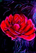Featured Pastels - Lonely Rose by Lynette  Swart