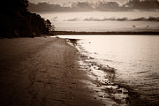 Lisa McStamp - Lonely Shore
