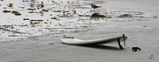Kahuna Photos - Lonely Surfboard LG by Chris Thomas