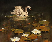 Dusan Vukovic - Lonely Swan