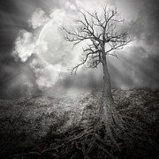Lonely Tree With Roots Holding The Moon Print by Angela Waye