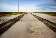 Country Dirt Roads Photos - Lonesome Road by Anne Beatty