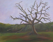 Fauna Painting Metal Prints - Lonesome Tree Metal Print by Patty Weeks