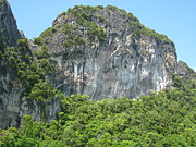 Long Boat Tour - Phi Phi Island - 0113209 Print by DC Photographer