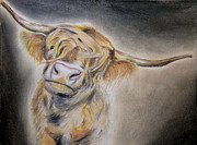 Horns Pastels - Long Haired Cow by Michelle Iglesias