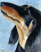 Puppy Mixed Media Originals - Long Haired Daschund by Christine Winship