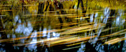 Tree Reflections In Water Posters - Long Lazy Country Stream Poster by Paul W Faust -  Impressions of Light