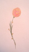 Springtime Pastels - Long-Stemmed Peach Rose by Christine Corretti
