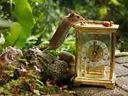 Hickory Dickory Dock Posters - Long-tailed Field Mouse Lunchtime Poster by Elizabeth Debenham