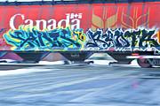 Long Train Runnin' Print by Theresa Tahara