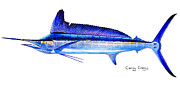 Marlin Azul Framed Prints - Longbill spearfish Framed Print by Carey Chen