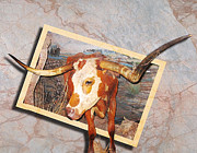 Steer Digital Art Framed Prints - Longhorn Stepping Out Framed Print by John Kain