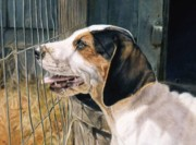 Foxhound Prints - Longing for the Chase Print by Anita Baarns