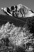 Rocky Mountains Prints - Longs Peak 14256 Ft Print by James Bo Insogna