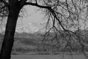 Ansel Adams Framed Prints - Longs Peak and Mt. Meeker the Twin Peaks Black and White Photo I Framed Print by James Bo Insogna