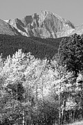 James Bo Insogna - Longs Peak Autumn Scenic BW View