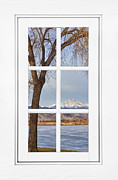 Home Walls Art Prints - Longs Peak Winter View Through a White Window Frame Print by James Bo Insogna