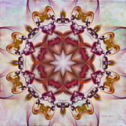 Kaleidoscope Art - Look Into The Center by Deborah Benoit