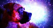 Look To The Stars Print by Kaylee Vergilio