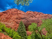 Zion National Park Photos - Look Up by Rob Wilson