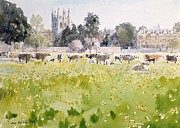 Greenish Posters - Looking Across Christ Church Meadows Poster by Lucy Willis