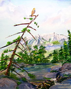 Red Tail Hawk Paintings - Looking at Katadin by Rich Mason