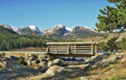 Lake Pyrography Prints - Looking At Longs Peak Colorado Print by James Steele