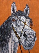 Drawing Drawings - Looking at you Andalusian by Lucka SR