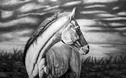 Wild Horses Drawings Originals - Looking Back by Glen Powell