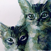 Tabby Prints - Looking For A Home Print by Paul Lovering