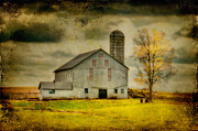 Barn And Silo Prints - Looking For Dorothy Print by Lois Bryan