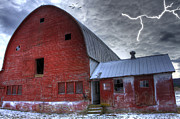 Farming Barns Digital Art Posters - Looking for Shelter Poster by David Simons