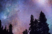 Stary Sky Prints - Looking into the Heavens Print by James Bo Insogna