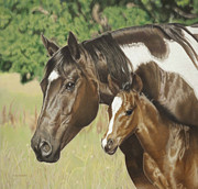 Quarter Horses Posters - Looking Out For Me Poster by Helen Bailey