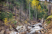 James BO  Insogna - Looking Up the South St Vrain Canyon