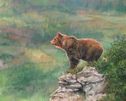 Brown Bear Art Framed Prints - Lookout Framed Print by David Stribbling