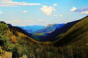 Colorado Mountain Posters Prints - Looks like U Print by Jon Burch Photography