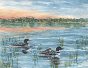 Kerry Kupferschmidt - Loon Family
