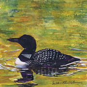 Desert Lake Painting Posters - Loon on Jordon Pond Maine Poster by Susan Herbst