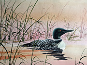 Art In Acrylic Painting Framed Prints - Loon Sunset Framed Print by James Williamson